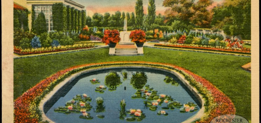Lily Pond, Eastman House Gardens, c.1935